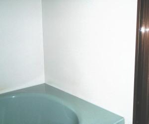 岐阜県海津市 浴室手摺り設置工事前